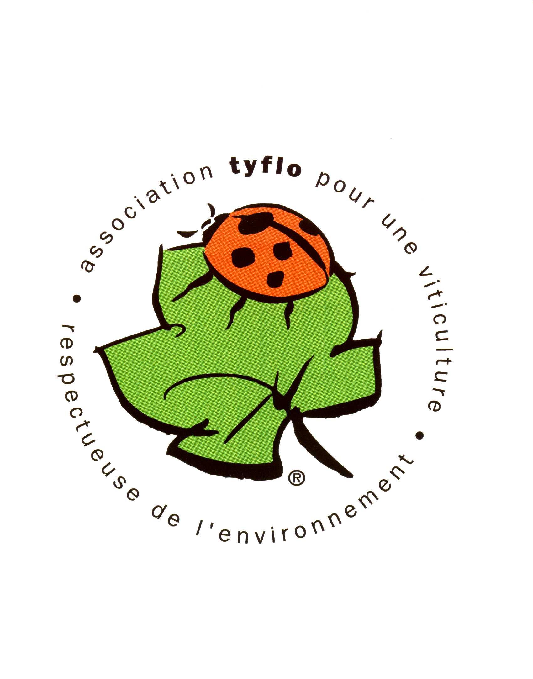 logo_tyflo_HD_couleur.jpg